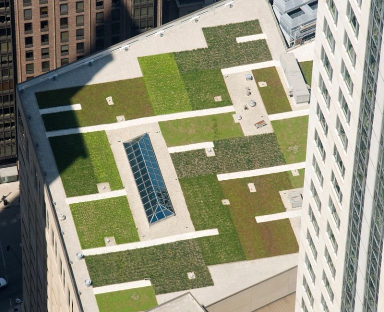 The ins and outs of installing a green roof